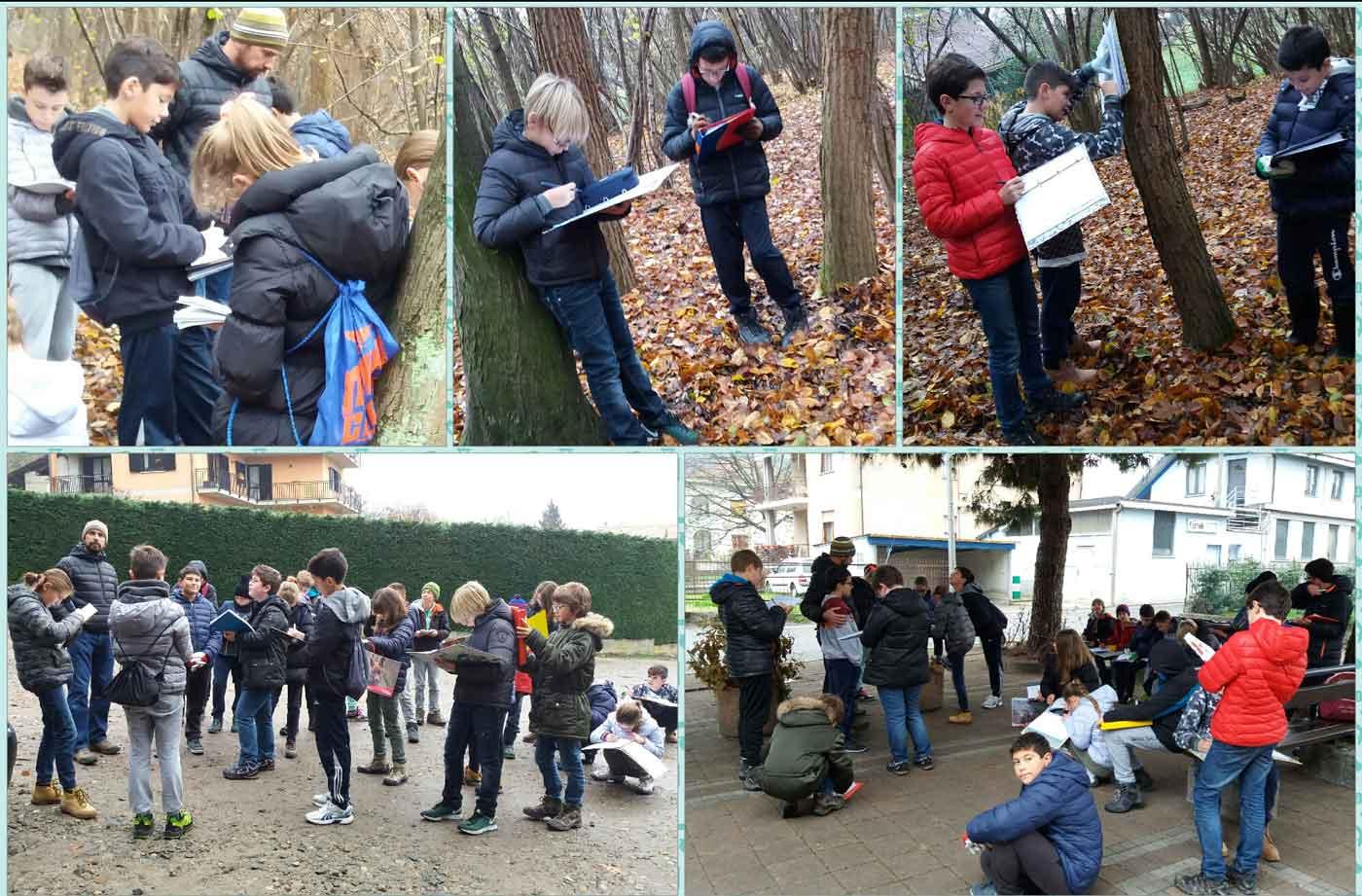 news-bloogle-lezione-di-scienze-nel-bosco-attivita