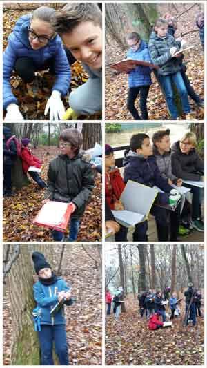 news-bloogle-lezione-di-scienze-nel-bosco-ragazzi